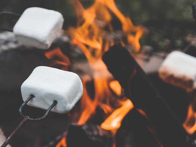 marshmallow-2481460_640